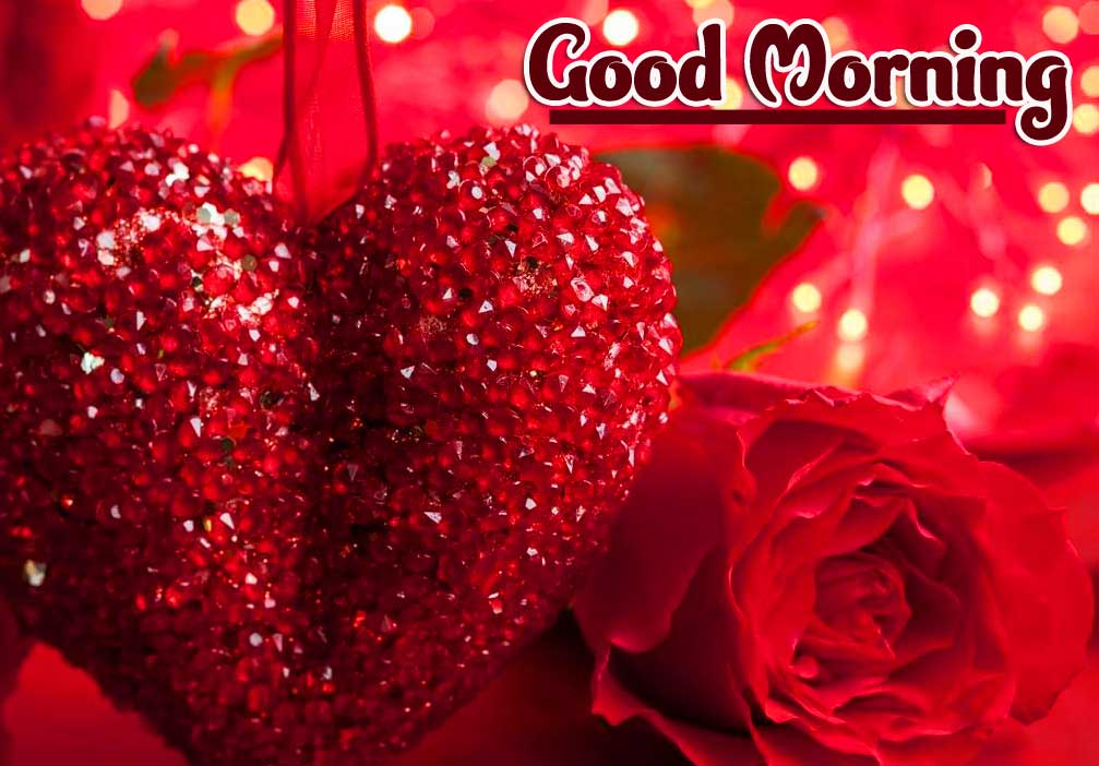 Best Good Morning Images Pics Free Download Latest