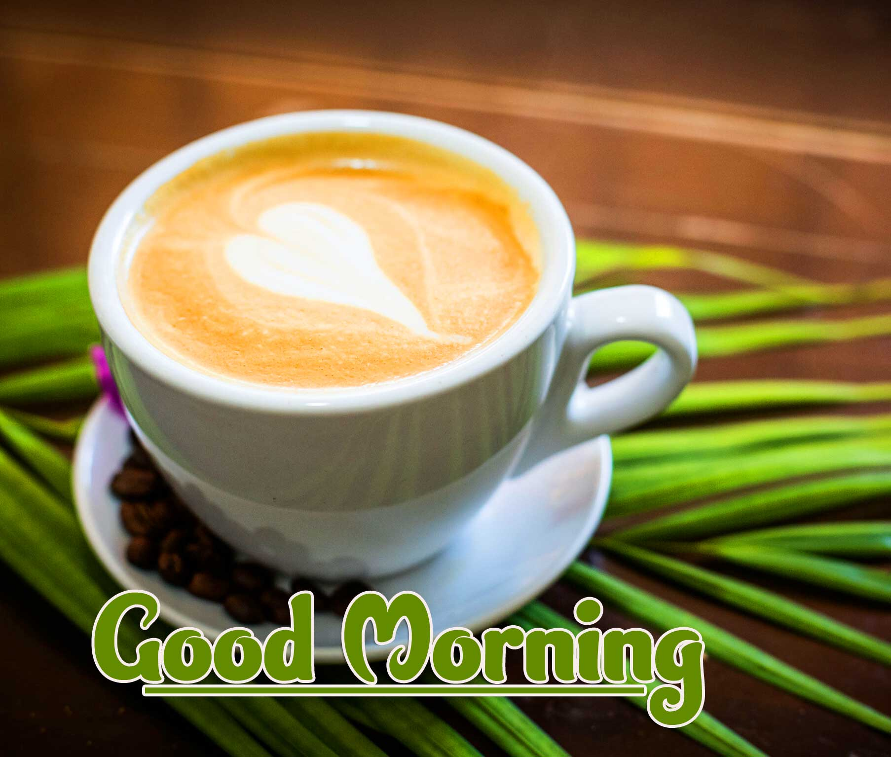 Best Good Morning Images Wallpaper pics With Coffe