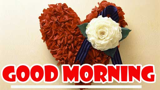 Best Quality free Dil Good Morning Images Pics Download