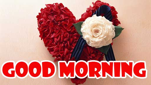 Free Best Quality Dil Good Morning Images Pics Download