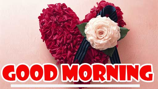 Dil Good Morning Images Wallpaper Pics Latest Download
