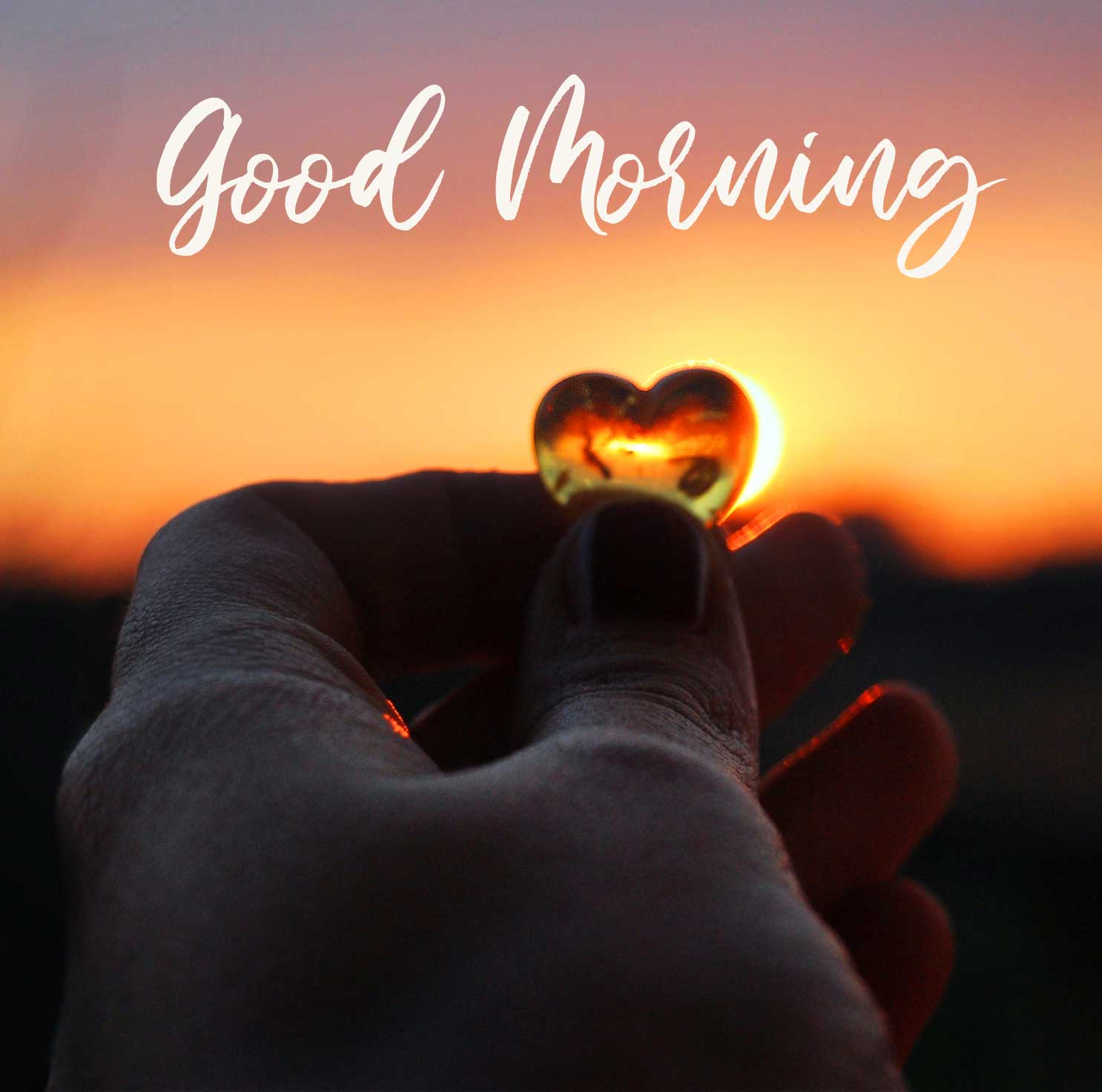 New Latest free Dil Good Morning Wishes Images Pics Download