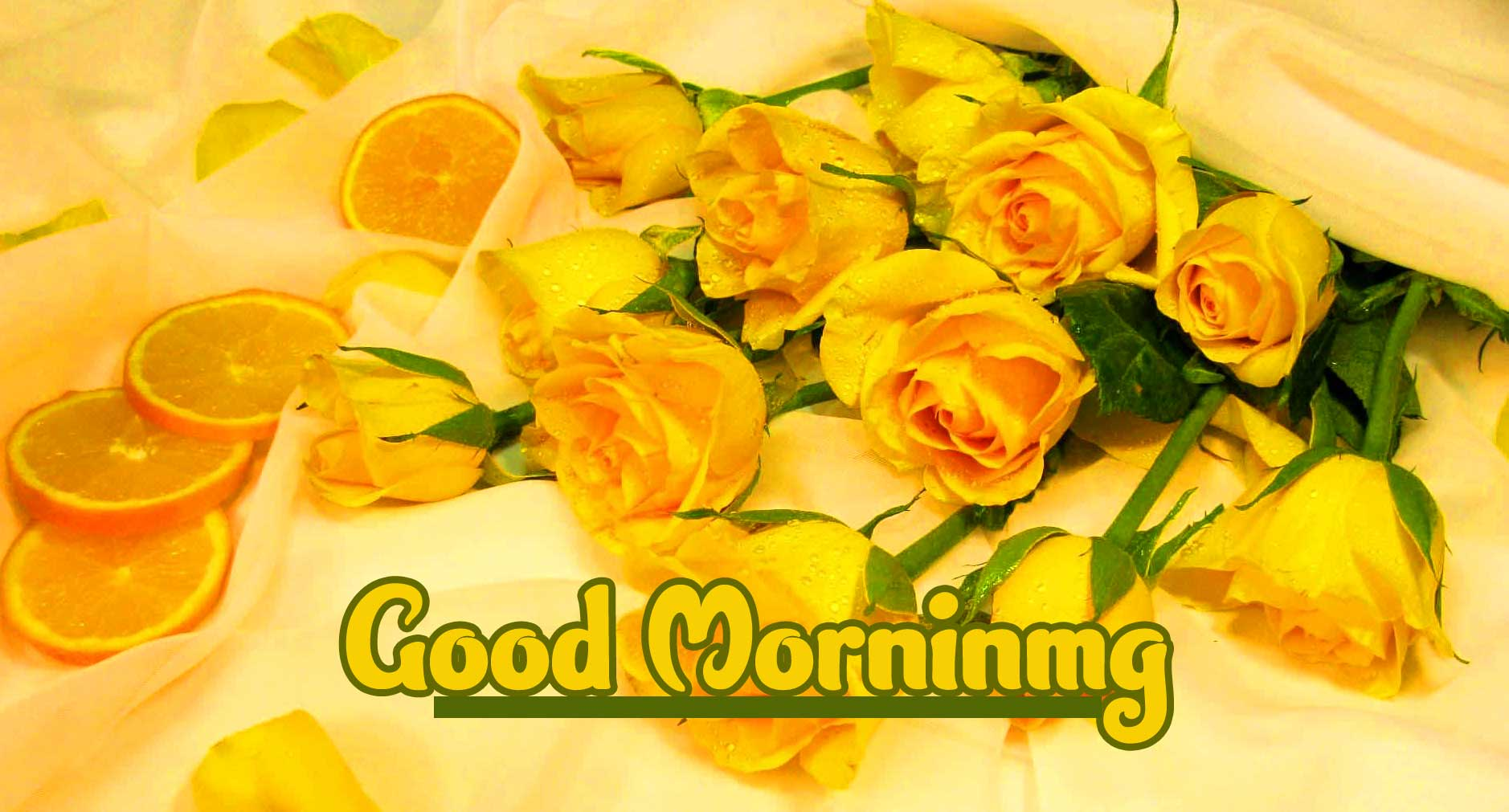 Good Morning Wishes Images Pics Wallpaper Download