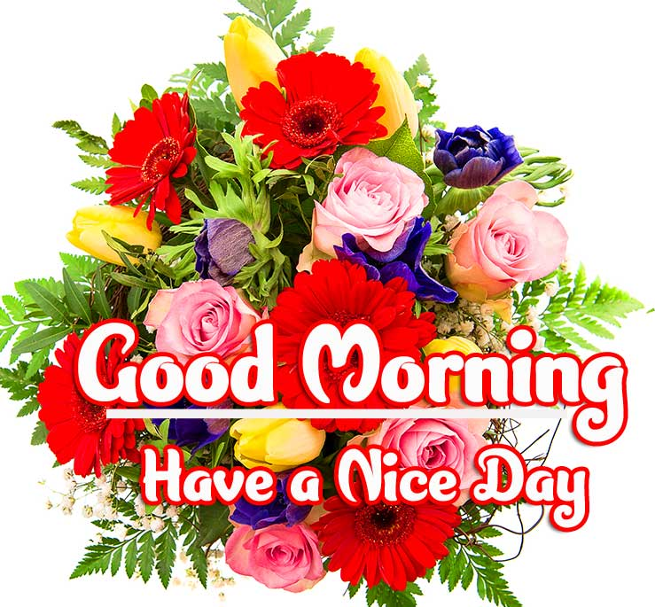 Beautiful Good Morning Wishes Images Pics Pictures Download