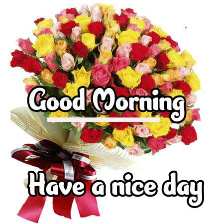 Beautiful Good Morning Wishes Images Pics Download Latest