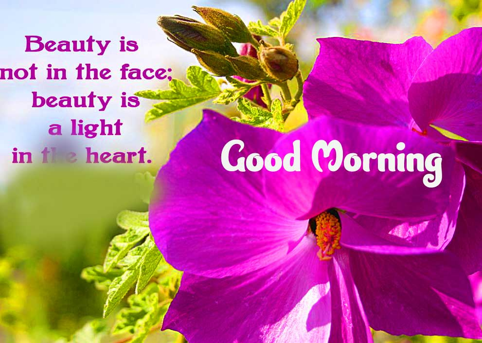 Beautiful Good Morning Wishes Images Pics Free Download