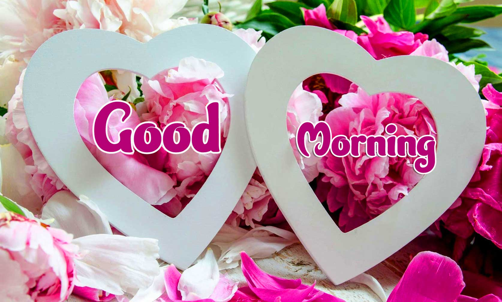 Beautiful Good Morning Wishes Images Wallpaper HD Download