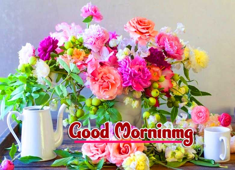 Best Free Good Morning Wishes Images Pics Download