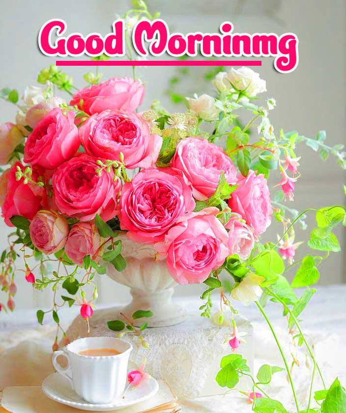 Latest Free Good Morning Wishes Images Pics Wallpaper Download