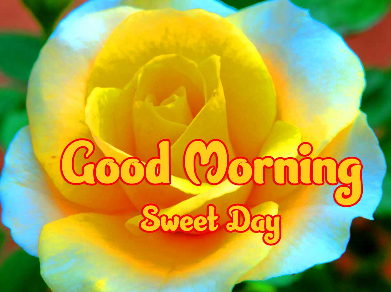 Beautiful Good Morning Wishes Images hd download