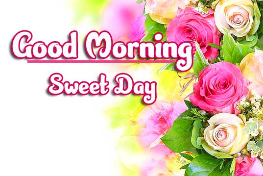 Beautiful Good Morning Wishes Images pictures download
