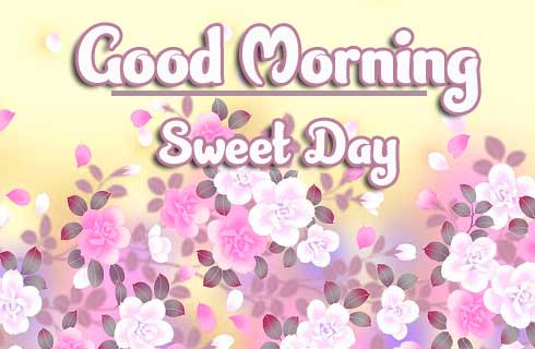 Beautiful Good Morning Wishes Images free download