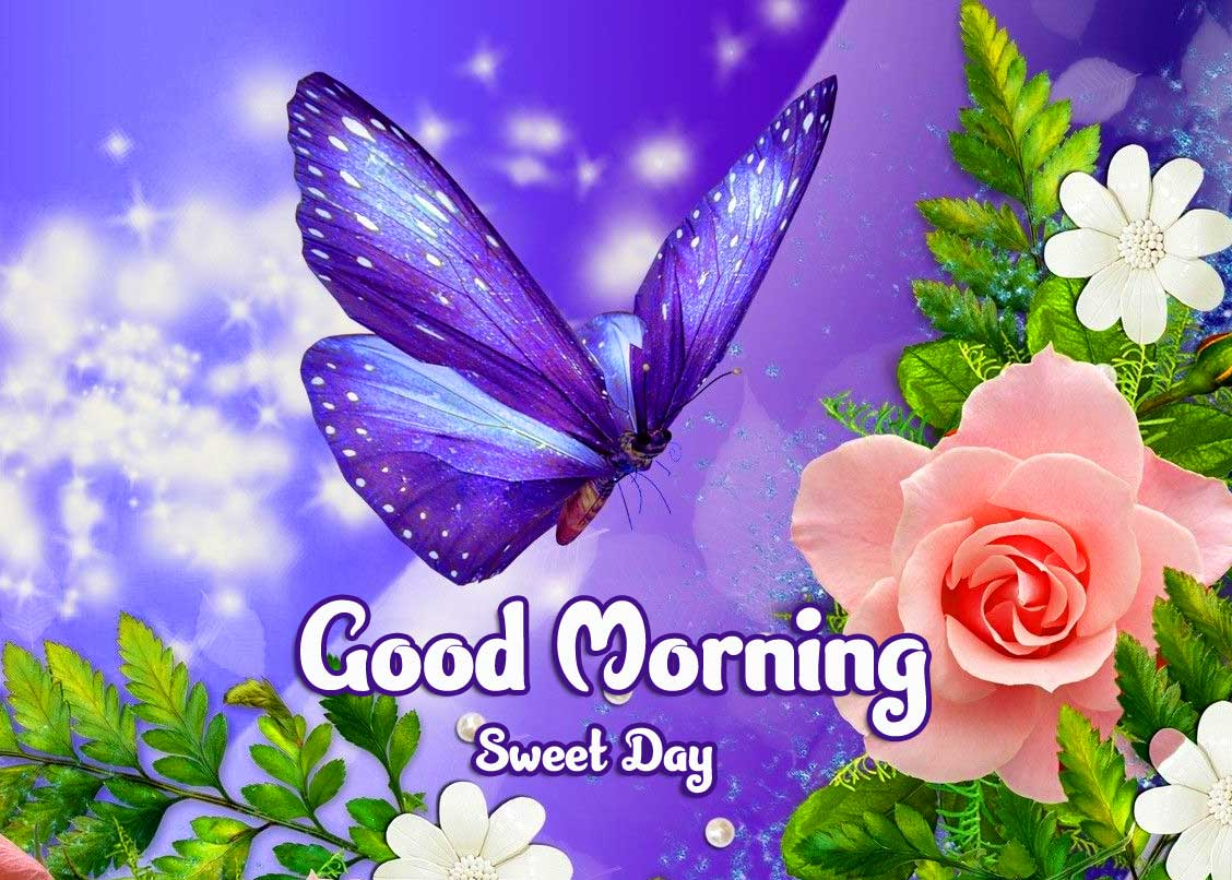 Beautiful Good Morning Wishes Images Pics Wallpaper Download