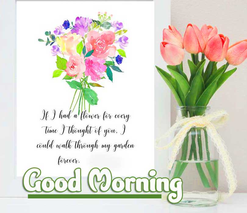 Beautiful Good Morning Wishes Images Pics Wallpaper Free Download
