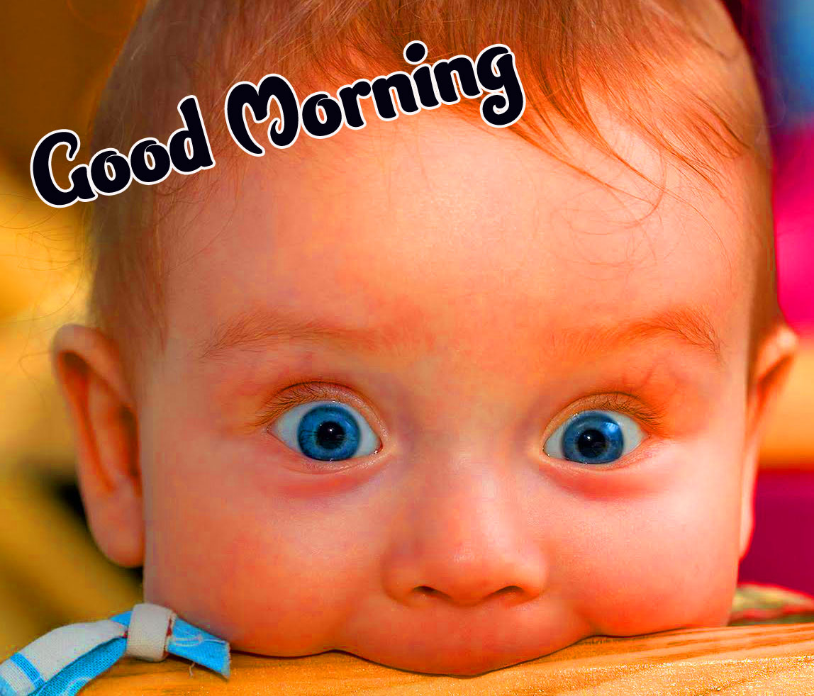 Funny Good Morning Wishes Pics Download