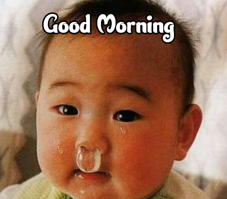 Funny Good Morning Wishes Images Download 35