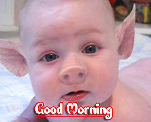 Funny Good Morning Wishes Images Download 46