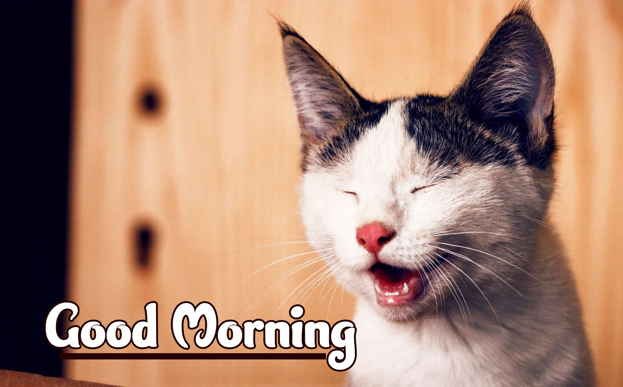 Funny Good Morning Wishes Images Download 58
