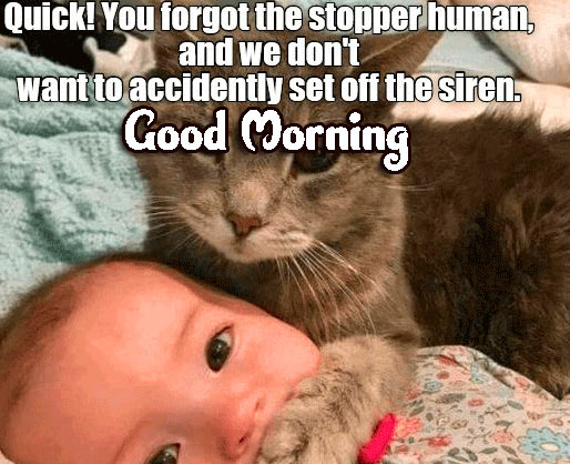 Funny Good Morning Wishes Images Download 76