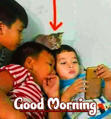Funny Good Morning Wishes Images Download 77