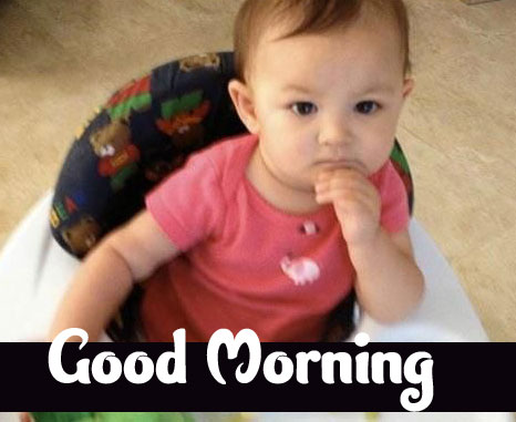 Funny Good Morning Wishes Pics pictures Download