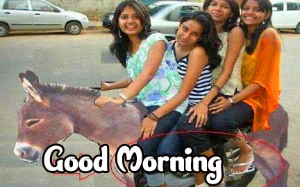 Funny Good Morning Wishes Pics Images Download In HD