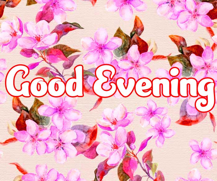 Good Evening Wishes Images HD Download