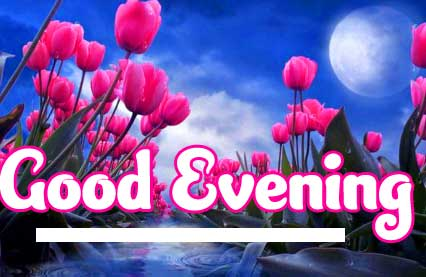 Best Free Good Evening Wishes Images Pics Download