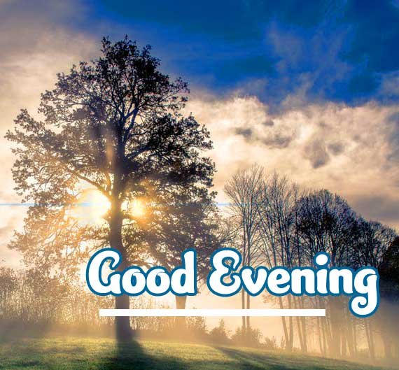 Good Evening Wishes Images Wallpaper for Facebook & Whatsapp