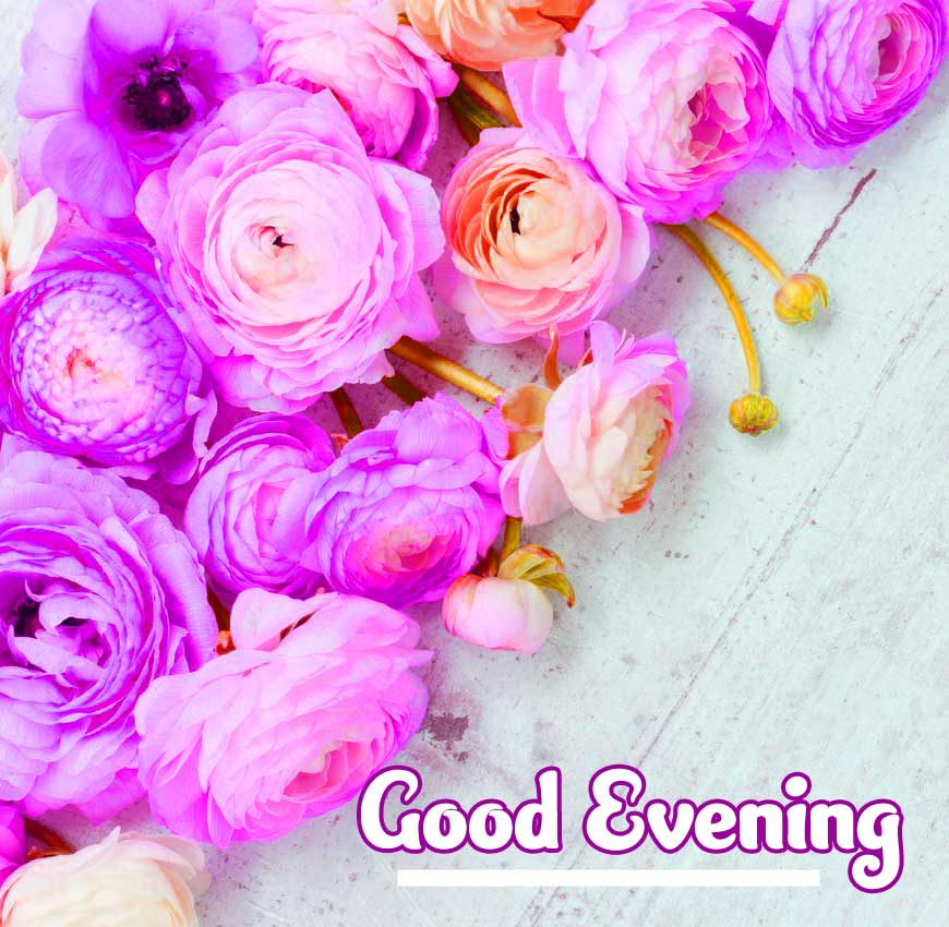 Good Evening Wishes Images Pics Free Download