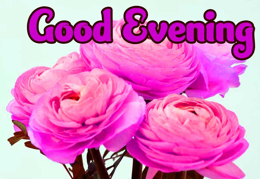 Good Evening Wishes Images pics Wallpaper Pic Wallpaper Download