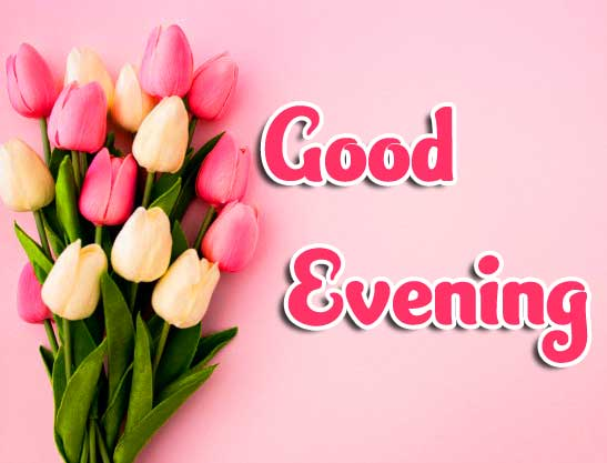 Beautiful Good Evening Wishes Images Pics Wallpaper Download