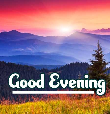 Top Quality Beautiful Good Evening Wishes Images Pics Download