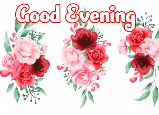 New Free Beautiful Good Evening Wishes Images Pics Download