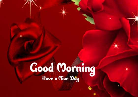 Good Morning 4k Ultra Images Wallpaper for Whats app