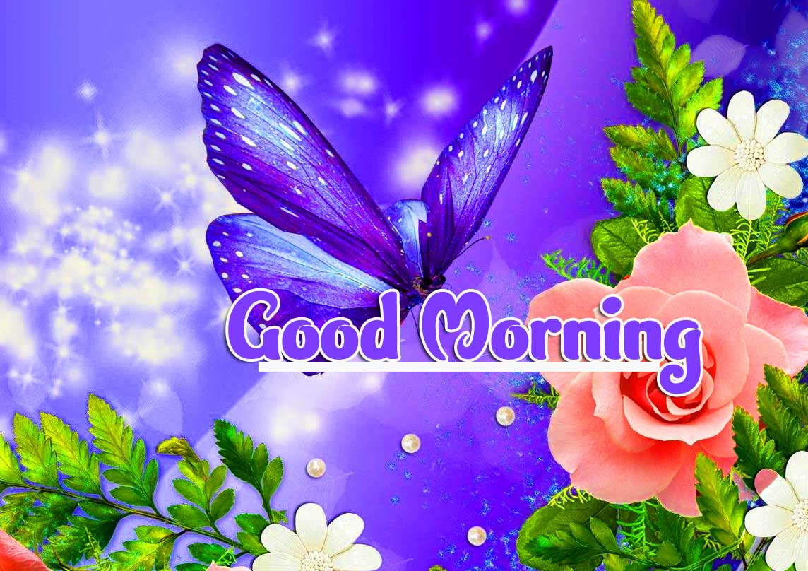 Good Morning 4k Ultra Images Wallpaper free Download