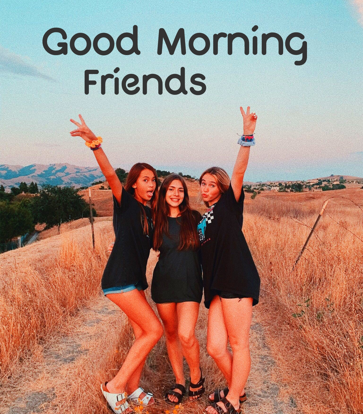Good Morning Friends Images Wallpaper Photo Download