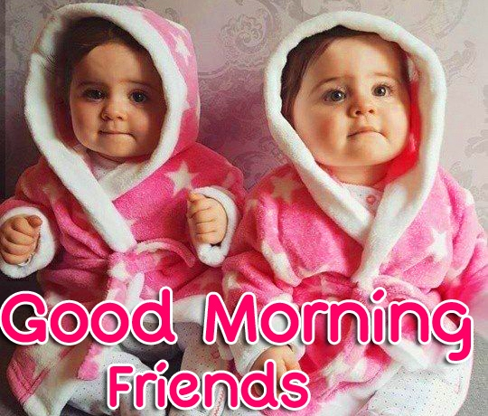 Good Morning Friends Images Pics Wallpaper Free Download