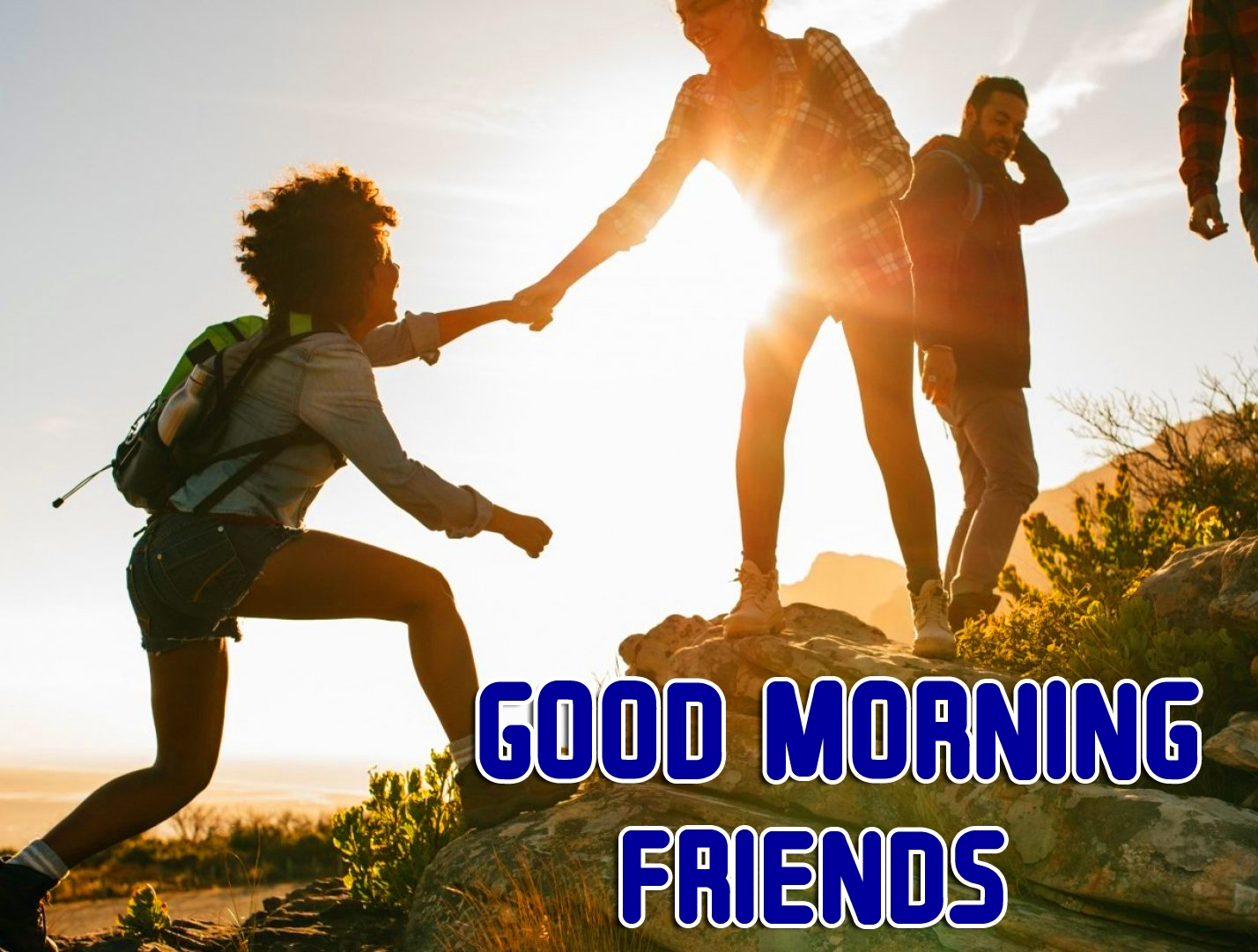 New Latest Free Good Morning Friends Images Pics Download