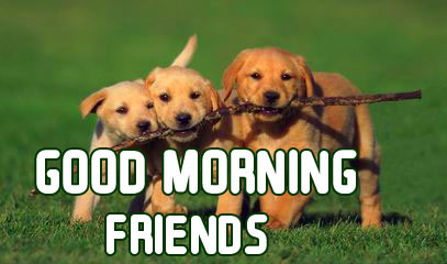Good Morning Friends Images Wallpaper for Facebook