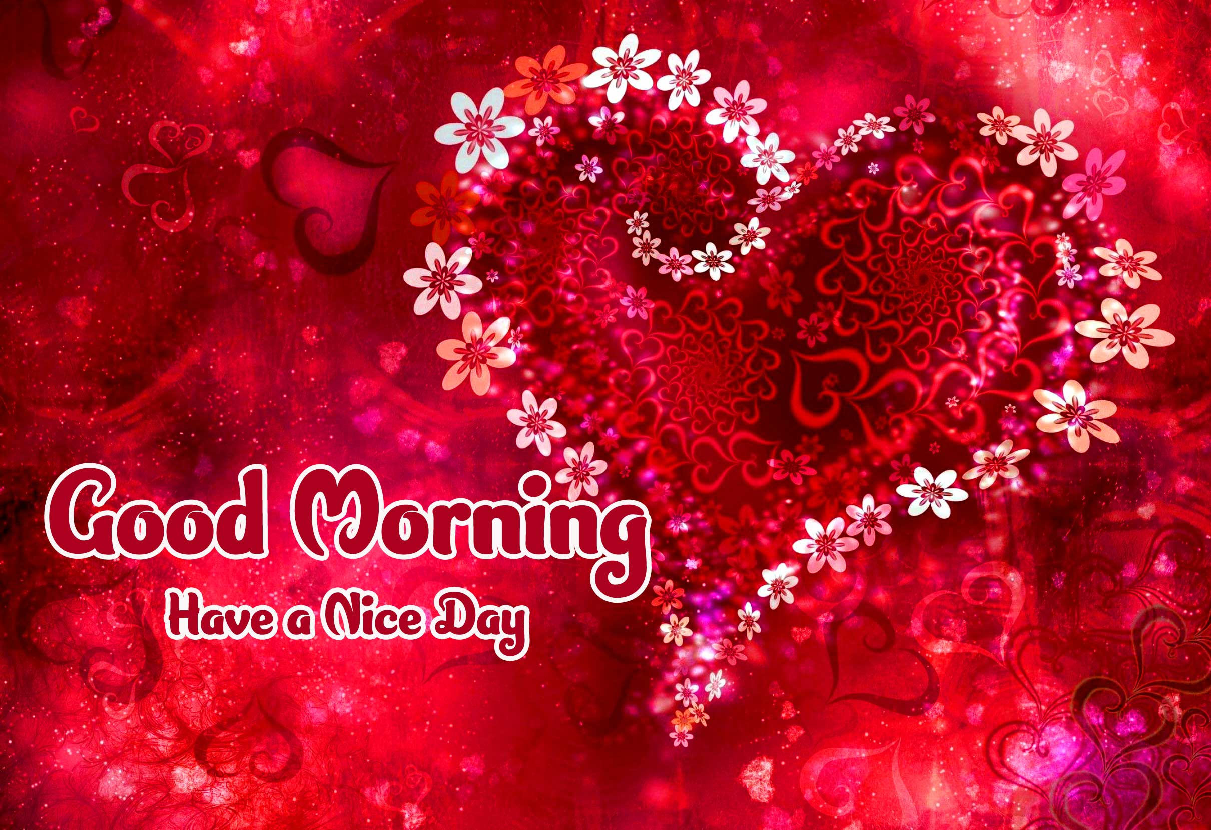 Lover Amazing 1080 p Good Morning 4k ImagesPics Download