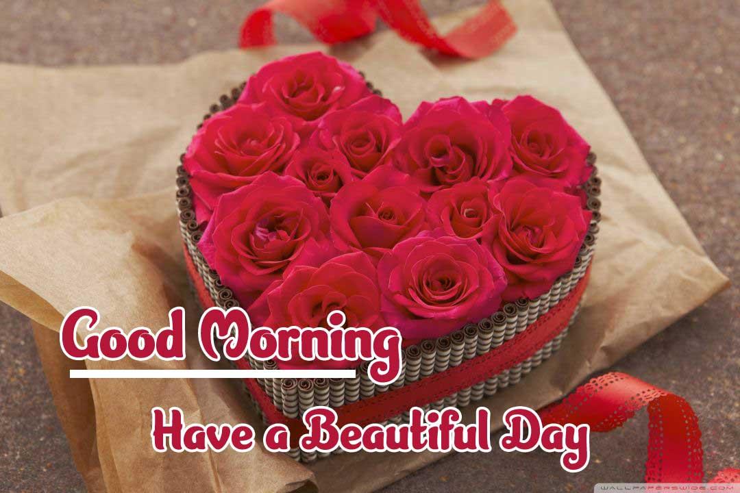 Amazing 1080 p Good Morning 4k ImagesPics for Whatsapp