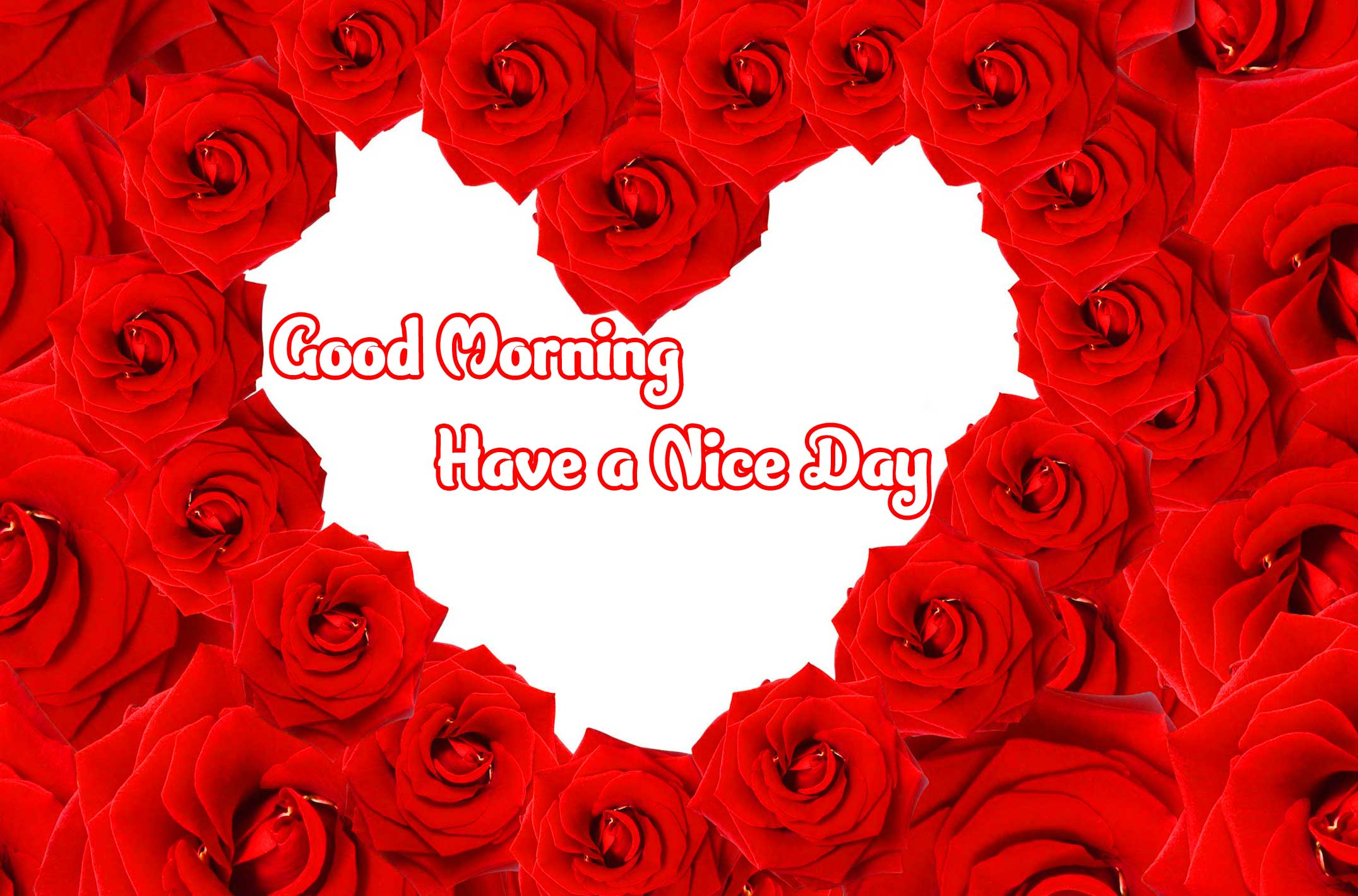 Amazing 1080 p Good Morning 4k ImagesPics Wallpaper for Love Couple
