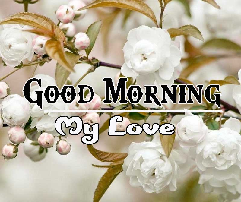 Good Morning Images HD 15