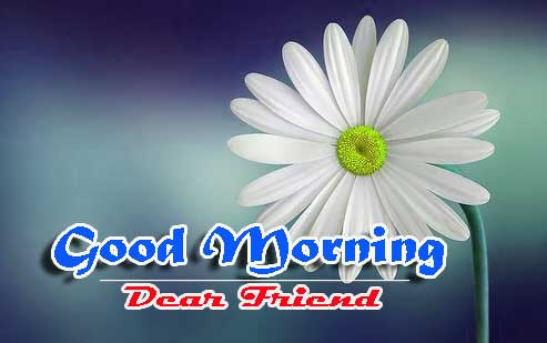 Good Morning Images HD 16