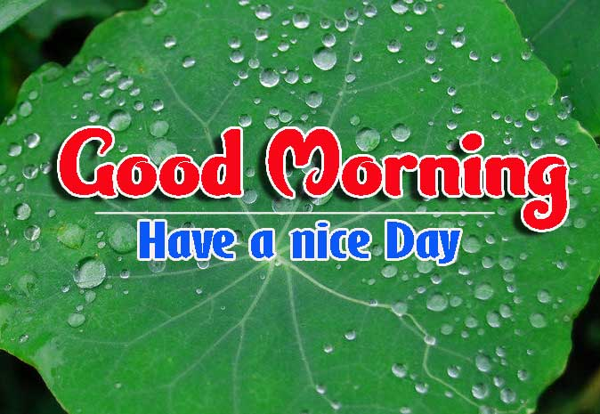Good Morning Images HD 17