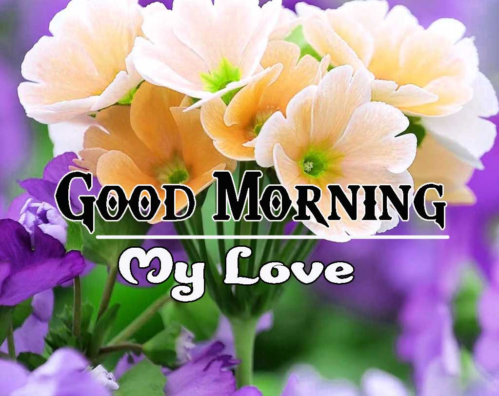 Good Morning Images HD 19