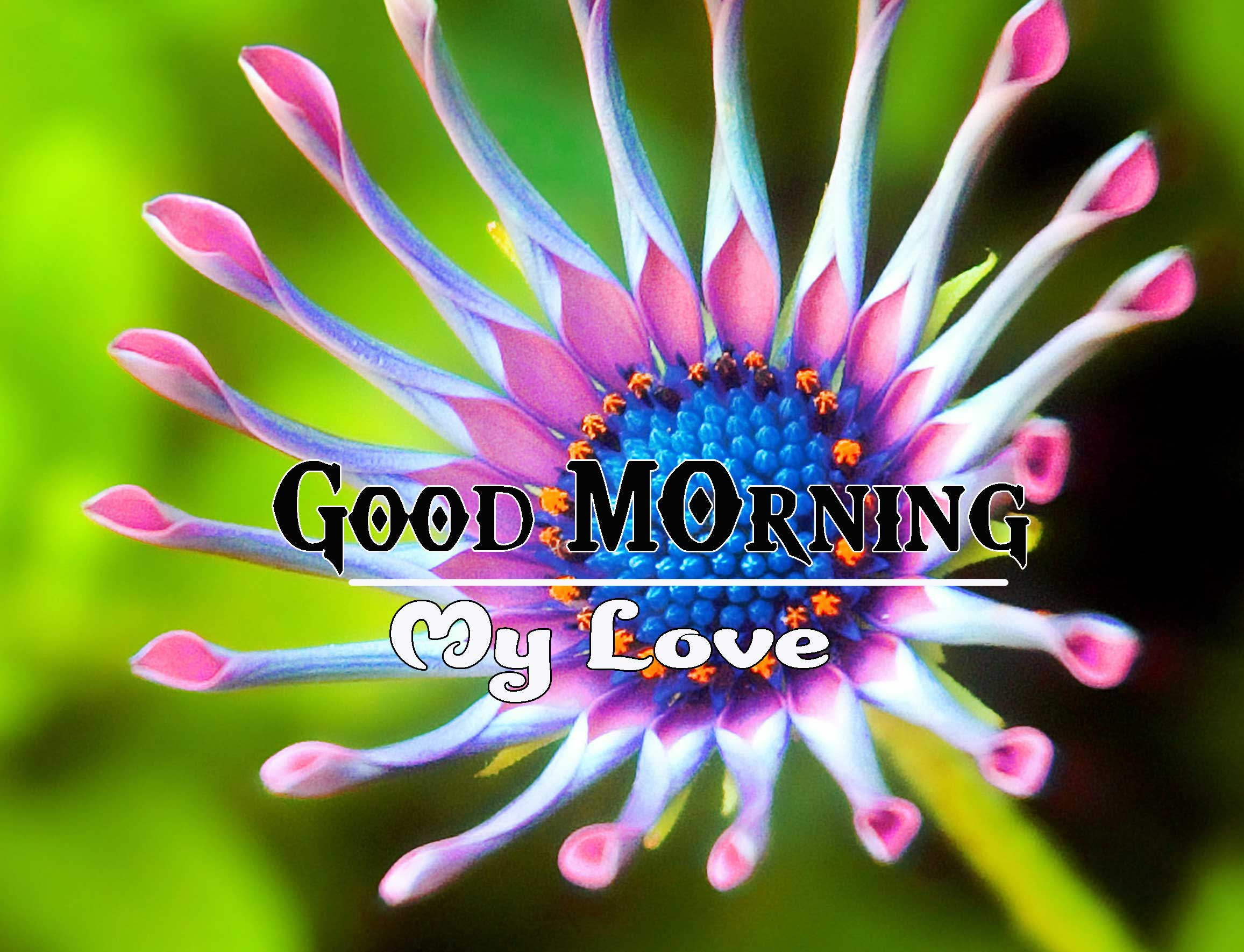 Good Morning Images HD 21