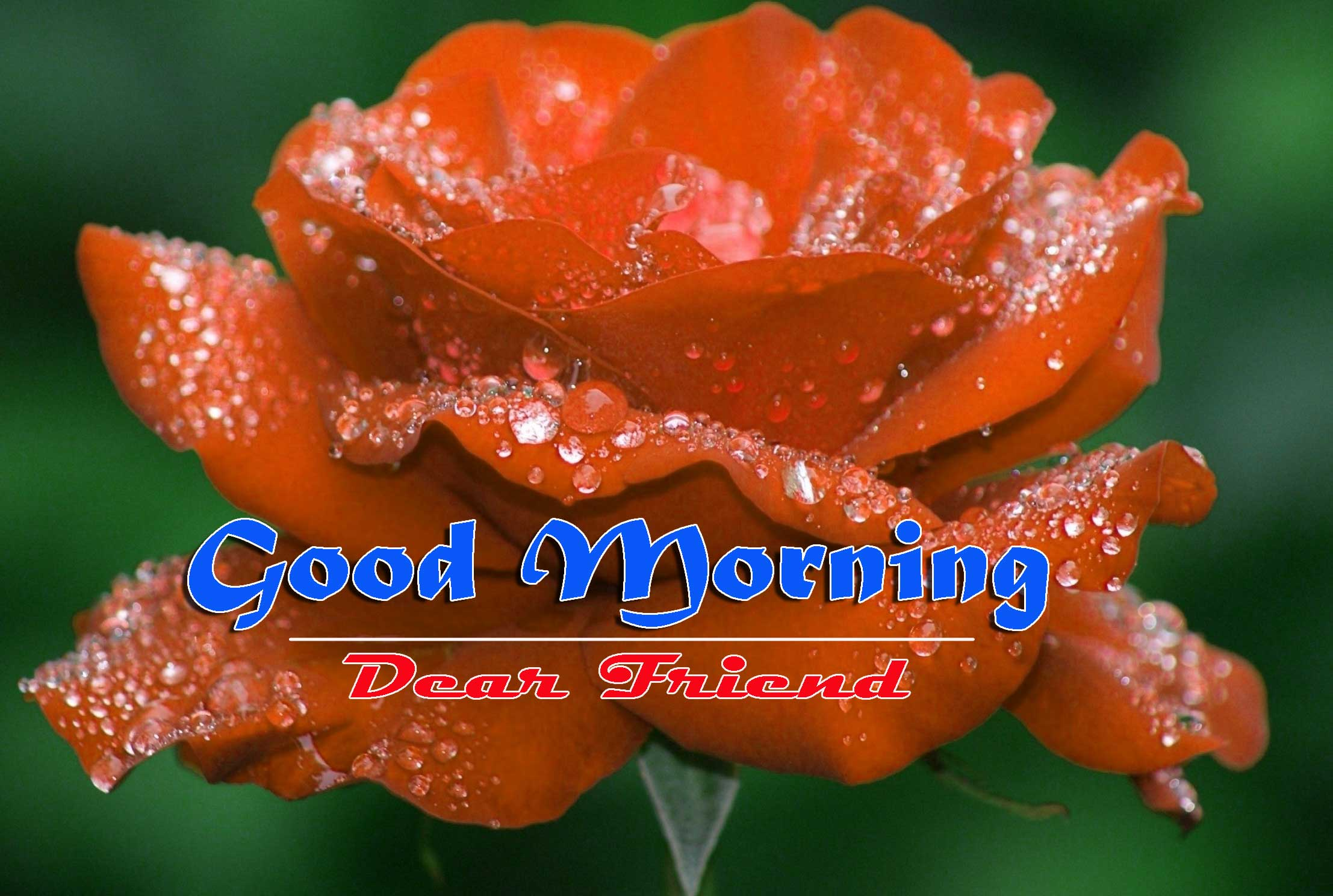 Good Morning Images HD 22