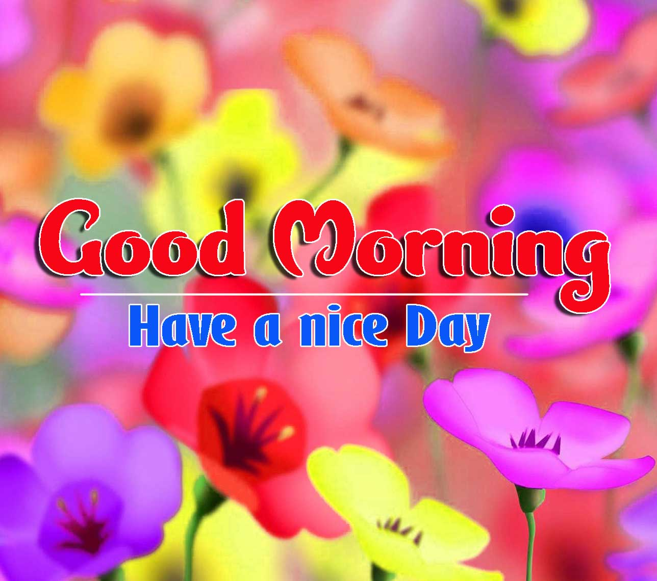 Good Morning Images HD 27